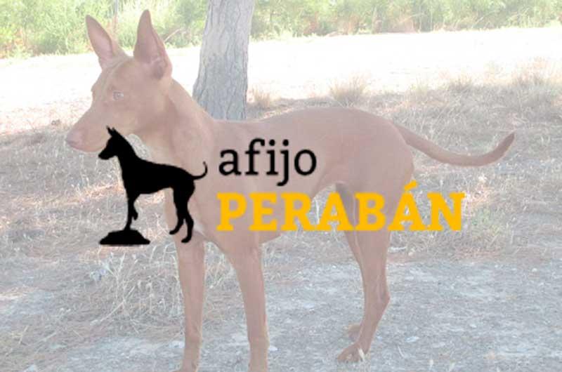 Afijo Perabán
